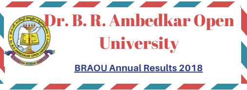 BRAOU Annual Results 2018