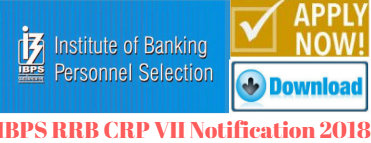 IBPS RRB CRP VII Notification 2018